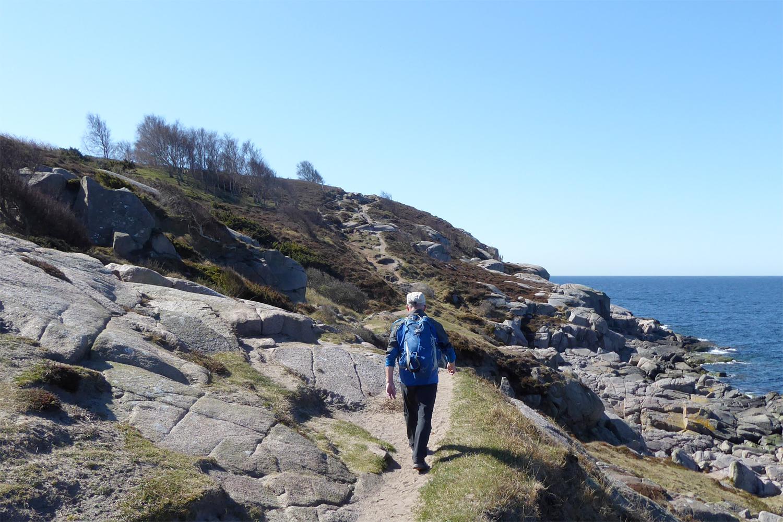 vandring ved Hammer Knude